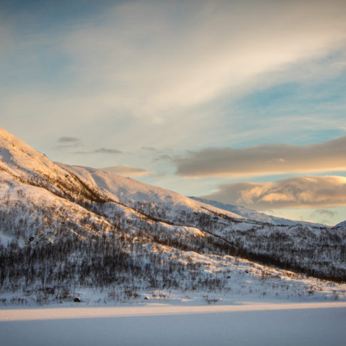 Snow, Mountain, trees, gold, sun, norway, sky, cloud
