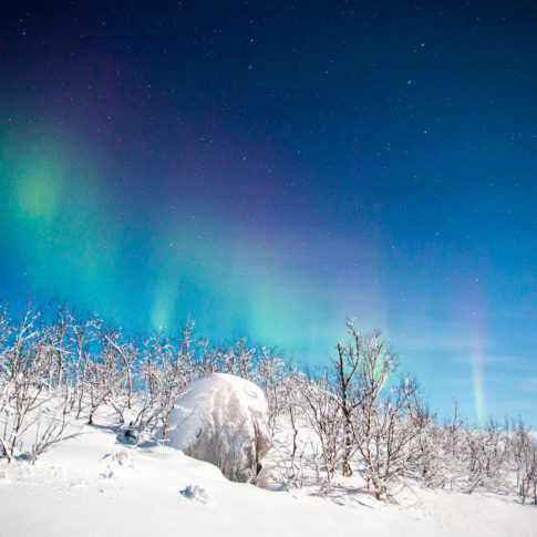 Sweden, Aurora, northern lights, snow, rock, tress, night, stars